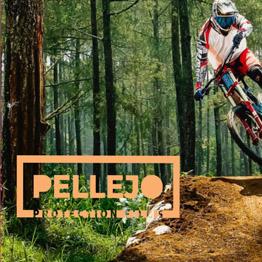 Web Site Pellejo